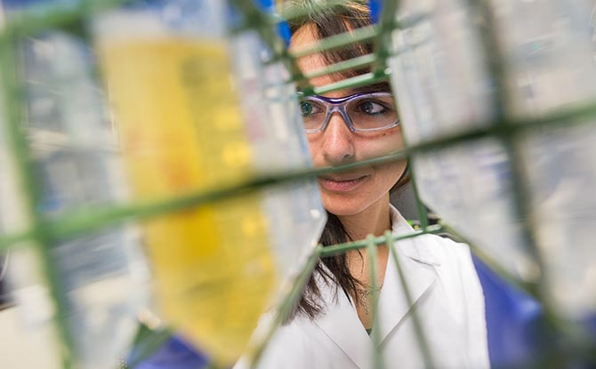 NREL scientist working in a lab.