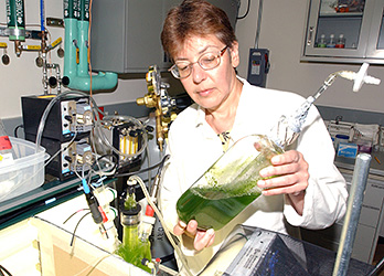 Photo of a woman in a laboratory holding a clear beaker of green algae.