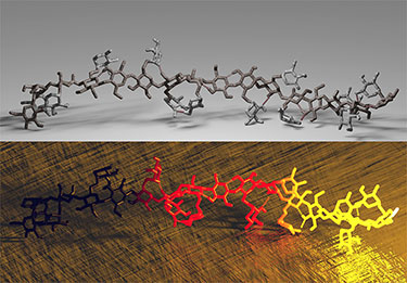 Two illustrations showing molecular models as a series of 3-D interconnected hexagons and rods, slightly twisted, sitting on a surface with shadows. The top image shows the model in tones of black and grey on a grey background. The bottom image shows the model blending from yellow to red to black and on a textured bronze-like background.