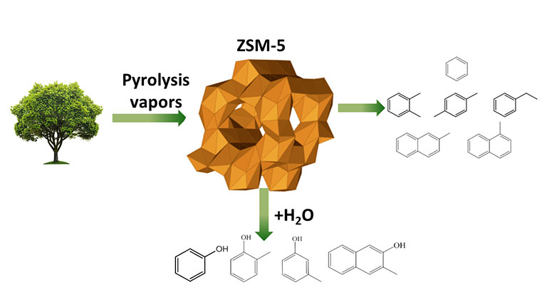 "Illustration showing an image of a tree with a green arrow labeled ""Pyrolysis Vapors"" leading right to a large illustration of the ZSM-5 catalyst that appears composed of tan and gold hexagons in two circular shapes. A green arrow at the bottom of ZSM-5 (with + H2O) leads to a series of four molecular diagrams. A green arrow to the right of ZSM-5 points to a series of six molecular diagrams."
