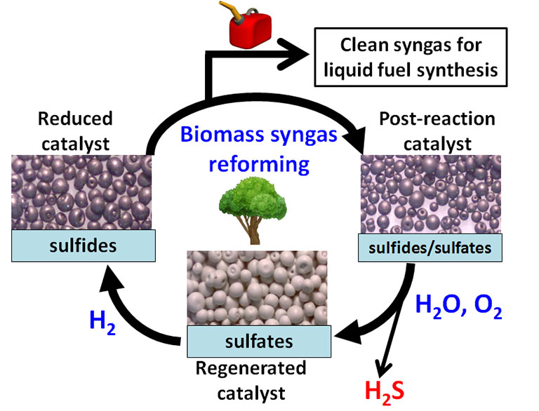 "Cyclical illustration with an image of a tree in the center surrounded by black arrows labeled ""Biomass syngas reforming"" at the top (with an arrow leading away from the cycle with an image of a gas can and ending at a rectangle labeled ""Clean syngas for liquid fuel synthesis""), leading to an illustration of greyish-purple globular spheres of varying size, loosely touching and labeled ""Post-reaction catalyst"" and ""sulfides/sulfates"" with an arrow labeled ""H2O, O2"" that has an offshoot arrow that ends at ""H2S and then leads to the bottom image of a pile of white globular spheres and labeled ""sulfates"" and ""Regenerated catalyst"", with an arrow labeled ""H2"" and leading to an image of greyish-purple globular spheres of similar size, loosely touching and labeled ""Reduced catalyst"" and ""sulfides"", culminating in the final arrow that leads back to the top and ""Biomass syngas reforming""."