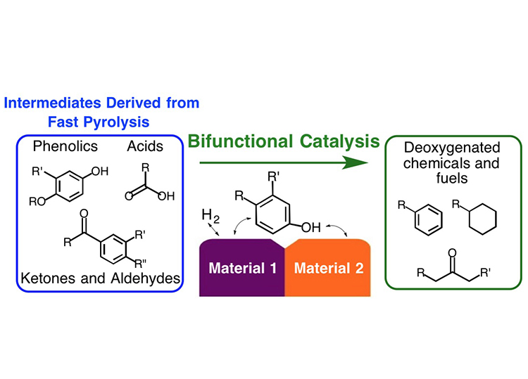 Illustration showing molecular images of phenolics, acids, and ketones and aldehydes on the left side in a blue-outlined box labeled Intermediates Derived from Fast Pyrolysis. It represents molecules formed from the thermal pyrolysis of biomass. A green arrow pointing left to right above the center of the image and labeled Bifunctional Catalysis indicates that the oxygenated molecules formed in pyrolysis of biomass are deoxygenated using a bifunctional catalyst. The center image shows a molecular illustration of a two-function catalyst surface where one side of an oxygenated molecule (a purple tab labeled Material 1) interacts with one catalyst and the other side (an orange tab labeled Material 2), containing a carbon oxygen bond, interacts with the second catalyst. The right side of the image shows molecular images of deoxygenated chemical and fuels and is inside a green-outlined box. It represents deoxygenated molecules that result from interaction with the catalyst.