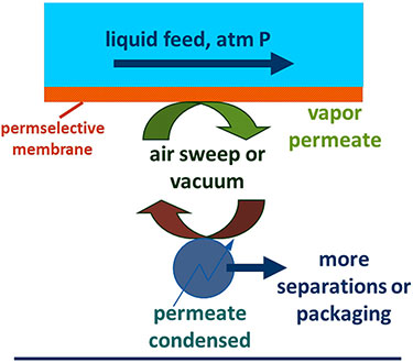 "Illustration representing a fluid contacting one side of a membrane and a sweeping gas contacting the other. A blue box at the top is labeled ""liquid feed, atm P"" with an arrow pointing right; this box sits on top of a narrow orange bar labeled ""permselective membrane."" Below this are two circular arrows with ""air sweep or vacuum"" labeled in between: the top green arrow is labeled ""vapor permeate;"" the bottom brown arrow sits on a blue sphere labeled ""permeate condensed"" with a blue arrow pointing right to ""more separations or packaging""."