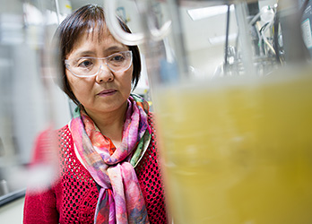 Photo of a female scientist wearing safety glasses examining yellow bacteria-producing chemicals growing in a clear beaker in a lab.