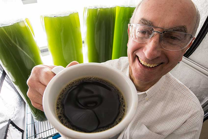 Smiling male NREL researcher holds a cup of coffee in front of green algae vials.