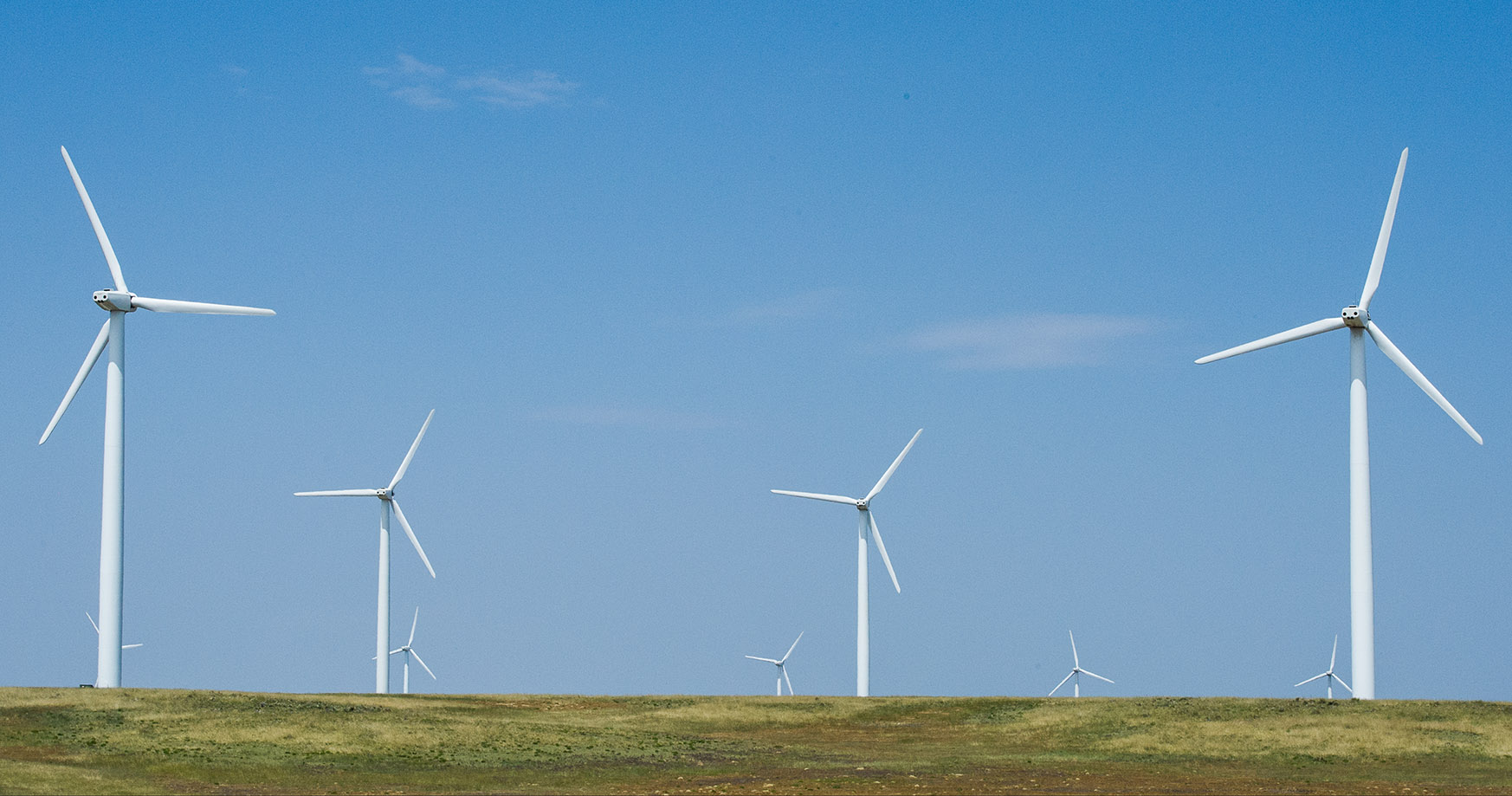Photo of a utility-scale wind farm.