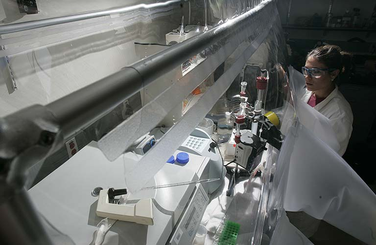Photo of a researcher looking inside a chamber filled with laboratory equipment.