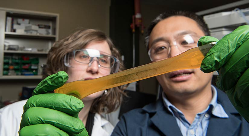 A researchers holds a long, translucent, orange resin in front of his and another researcher's face while wearing green gloves.