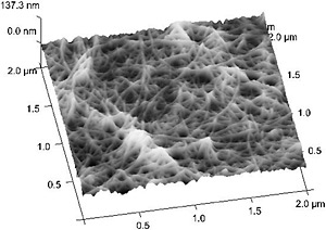 Another high-resolution image of carbon nanotubes. The image is similar to those above but appears three-dimensional.