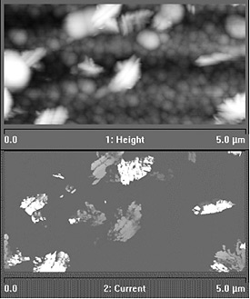 Top: High-resolution image of a sample semiconductor device made of silicon and tin oxide on glass; the image was obtained using atomic force microscopy and features large, rounded white clusters on a background of smaller, darker gray clusters. Bottom: High-resolution image of the same sample semiconductor device made of silicon and tin oxide on glass shown above; this image was obtained using conductive atomic force microscopy and appears as widely separated white and light gray jagged clusters on a dark gray background.