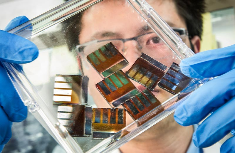 Photo shows a man looking at a handful of solar cells made of perovskite.