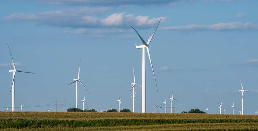 Photo shows rows of wind turbines.