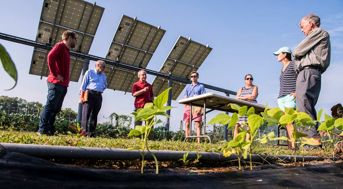 Seven people stand in conversation between solar panels and sprouting plants.