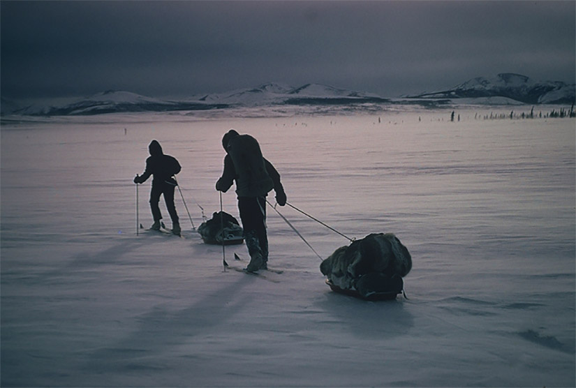 Two people on skis pull a sled in an Arctic environment