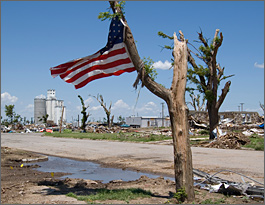 Photo of a tree stump with an American flag attached to one of the two remaining branches blowing in a breeze. Rubble from destroyed homes and the still intact granary are seen in the background.