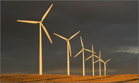 In a photo, six wind turbines in a row appear golden in the early morning sun against a dark sky.