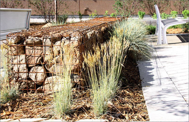 New low energy building a landscape leader too news nrel for Gabion landscaping