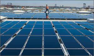 Photo of a man walking on a roof with many solar panels in the foreground.
