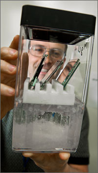 This photo shows a scientist holding a see-through container that holds three glass squares above a solution of whitish semi-solid salt.