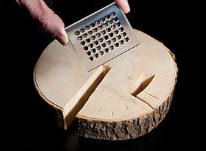 Photo of a left hand holding a rectangular tray that has 48 cups, each holding a small amount of a biomass sample. Below the tray is a slice of a poplar tree, about an inch thick and a foot in diameter.