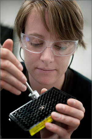 Photo of a woman using a light tool to test algae samples.