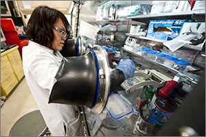 This photo shows a scientist in a white lab coat and with her right arm in a glove box. The glove box has a busy collection of plastic containers.