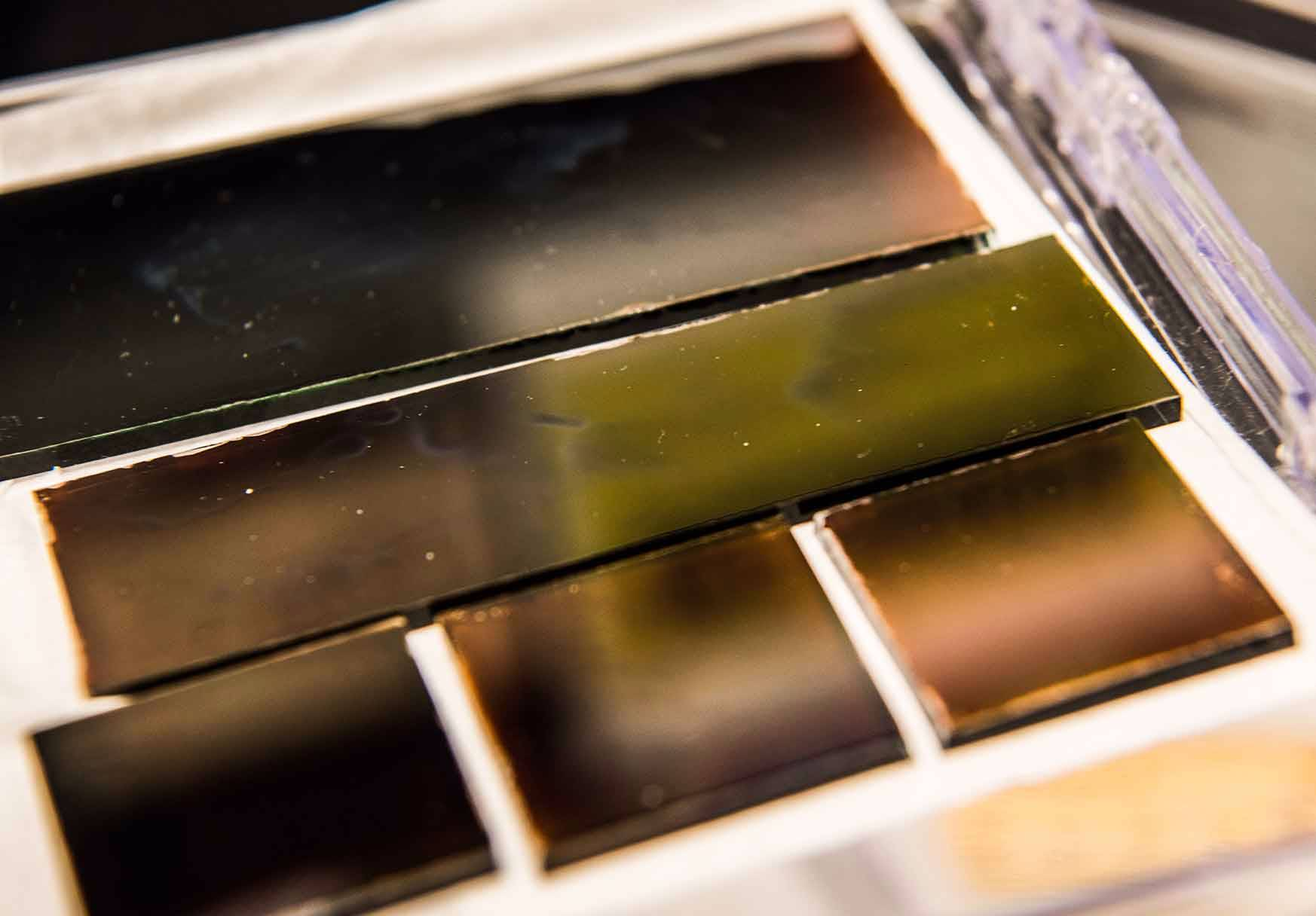 Photo shows a row of solar cells grown using a new perovskite ink.