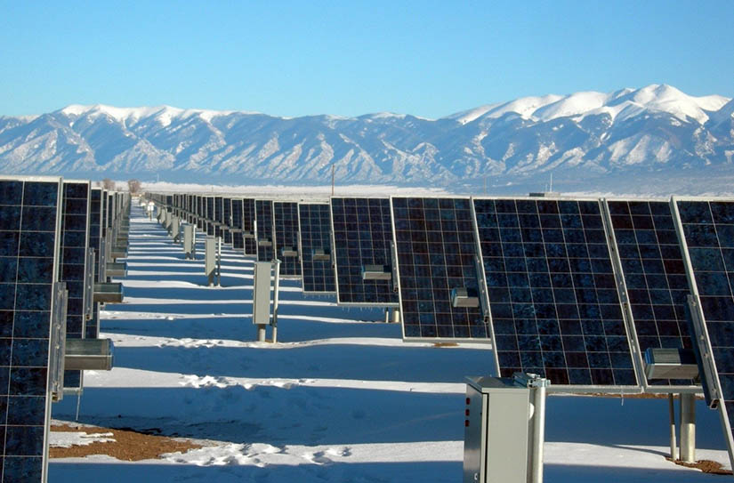 Photo shows rows of solar panels