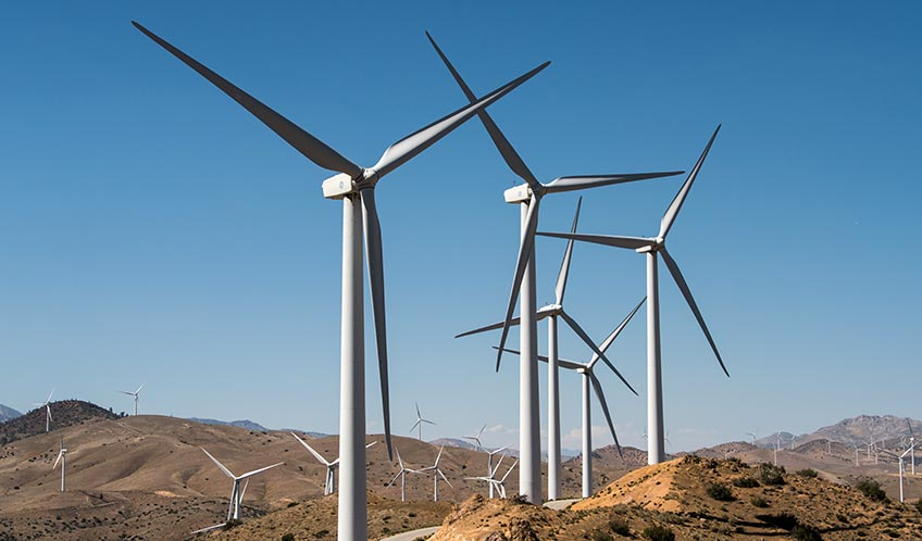 Wind Turbines Get Social To Improve Wind Power Plant Output