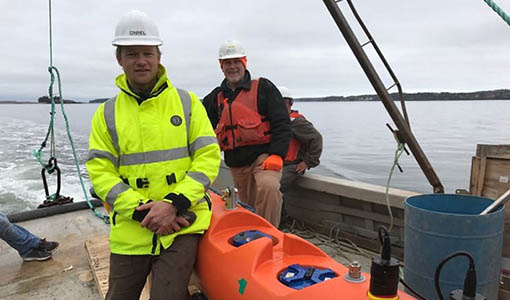 Harnessing Marine Energy at All Scales, From a Village Microgrid to a Vast Tidal Inlet