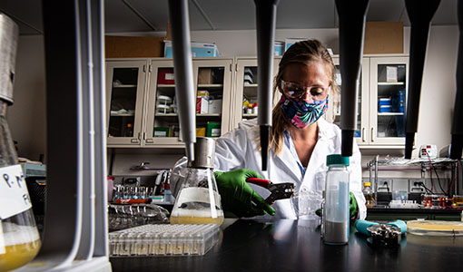 NREL Researchers Share $40 Million with Partners To Scale Next-Gen Biotechnologies
