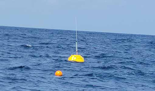 A yellow buoy with antenna bobs in the ocean.