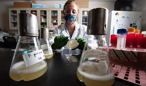 Researchers Engineer Microorganisms To Tackle PET Plastic Pollution