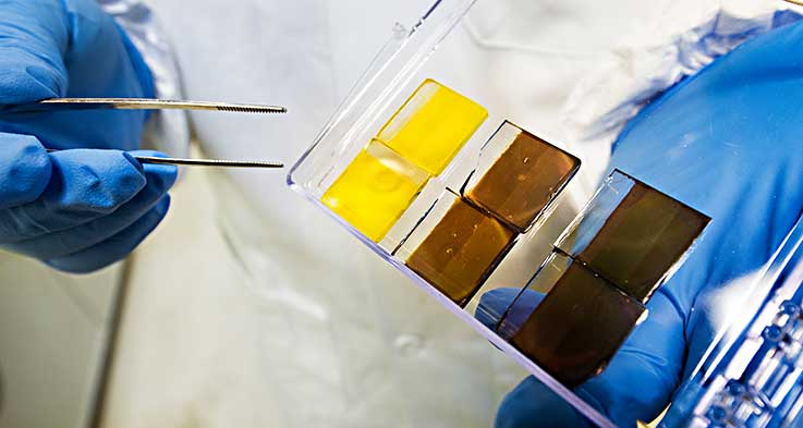 Scientist holds several perovskite cells he has made in his lab, using a precursor solution that converts from a liquid base to an absorber in a device.