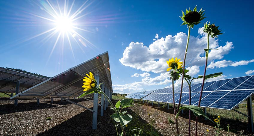 Solar Photovoltaic Technology Basics | NREL