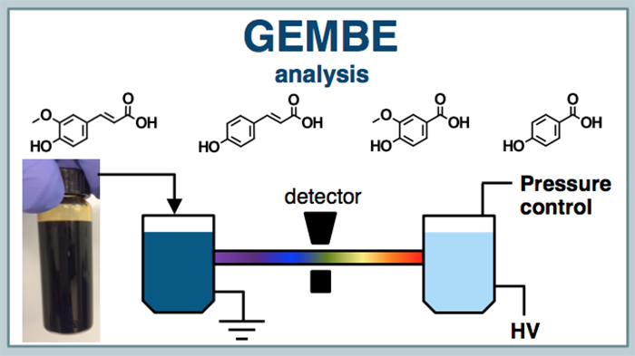 Flow chart with molecular formulas showing the gradient elution moving boundary electrophoresis (GEMBE) analysis.