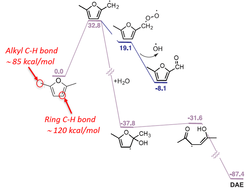 Image indicates Alkyl C-H bond 85 kcal/mol and Ring C-H bond 120 kcal/mol within the mechanism.
