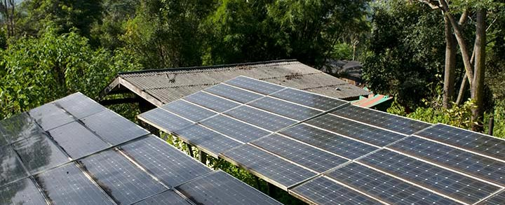 Rooftop solar photovoltaic array/panels on a building in a jungle.